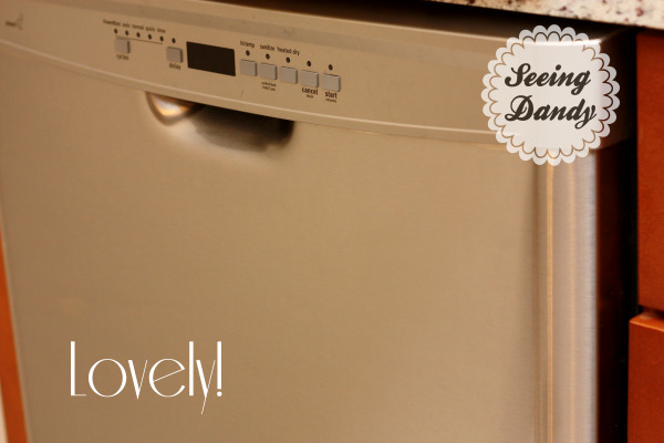 Best way to clean stainless steel dishwasher.