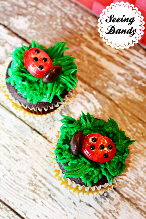 Easy to follow instructions for making ladybug birthday party cupcakes.