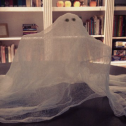 cheesecloth ghosts, fall decorating, family fun, kids crafts, halloween crafts, halloween decorating, halloween ideas, DIY halloween