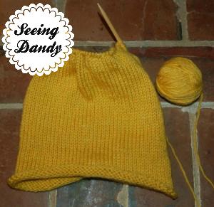 knit pumpkin 4