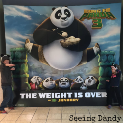 Kung Fu Panda 3 in 3D:  Family History