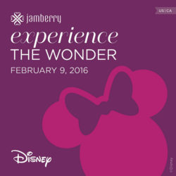 Disney Collection By Jamberry GIVEAWAY!