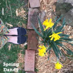 It Spring Sprang Sprung In The Lou
