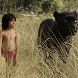 Parents Be Mindful: Jungle Book Is Intense