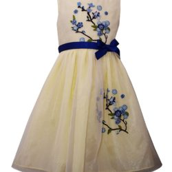 Where To Find Older Girls Easter Dresses (Size 7-16)