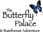 The Butterfly Palace Branson Rainforest Adventure Deal