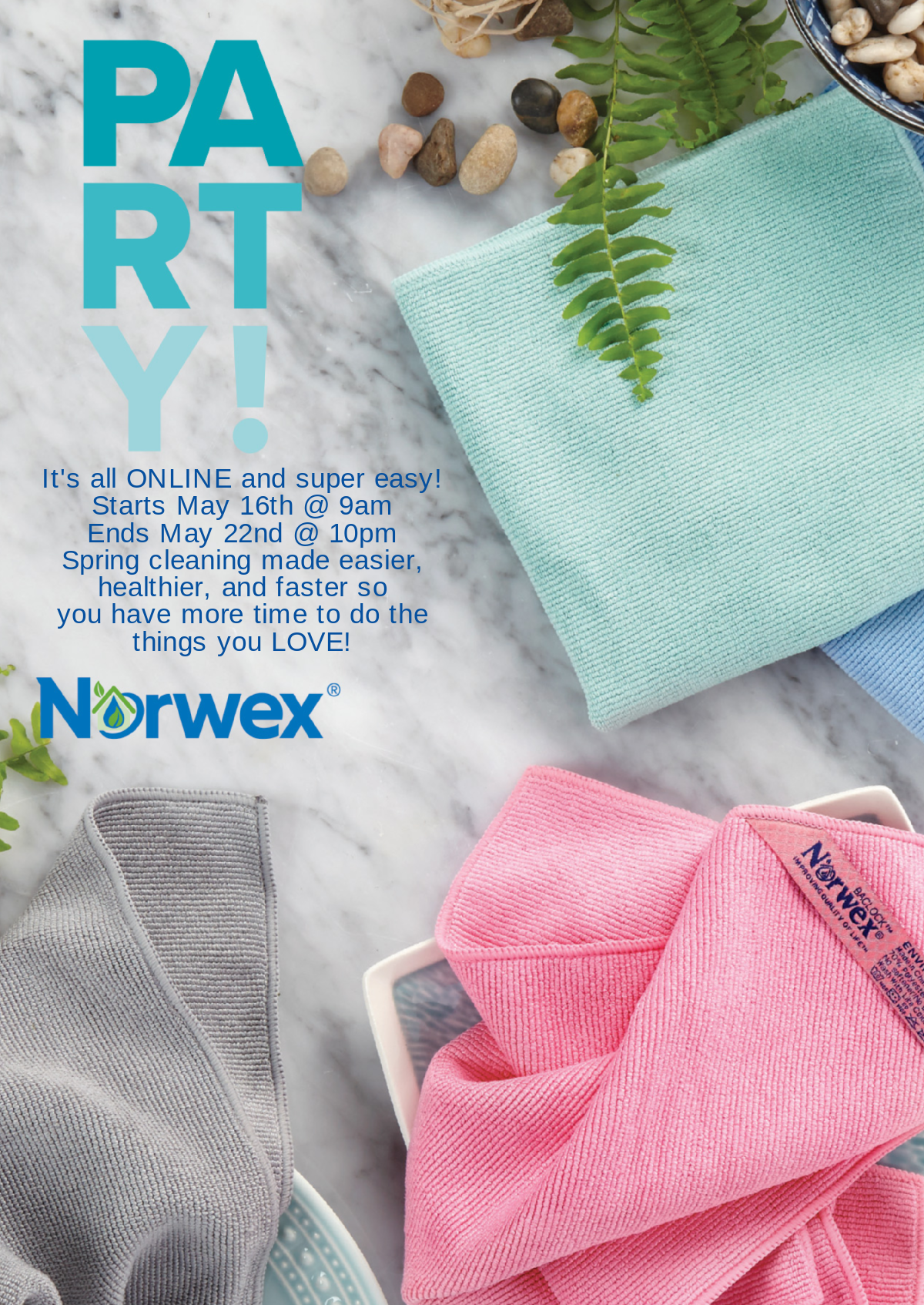 How To Join A Norwex Mystery Hostess Party - Seeing Dandy