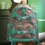 Best Back To School Backpack Deals