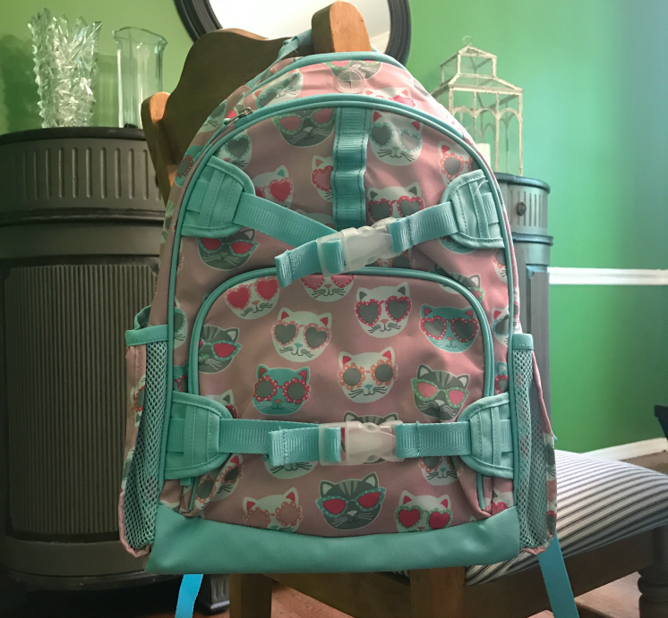 Best Back To School Backpack Deals Seeing Dandy