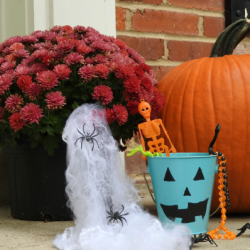 How To Be A Teal Pumpkin House For Halloween