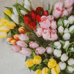 5 Last Minute Mother's Day Gifts That Will Arrive In 2 Days