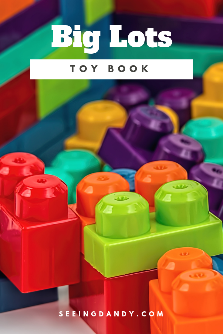 Hot holiday toys for 2018 in the Big Lots toy book.
