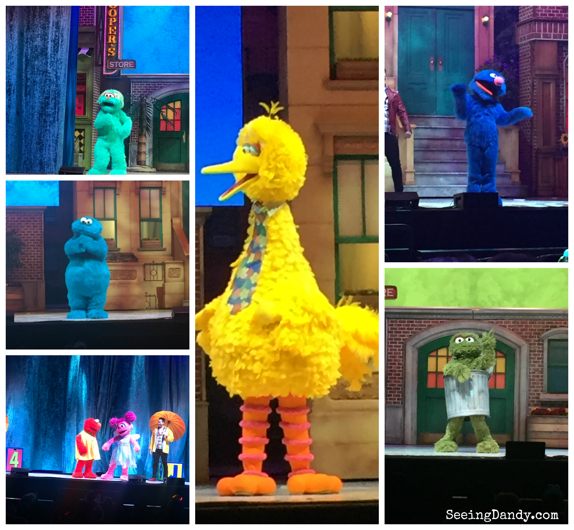 Sesame Street Live characters performing at family Valentine's Day show.