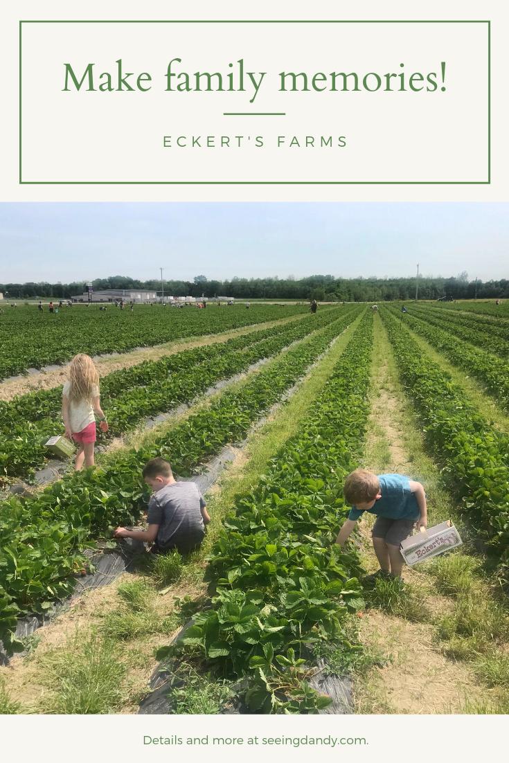 Children enjoying Eckert's Farms.