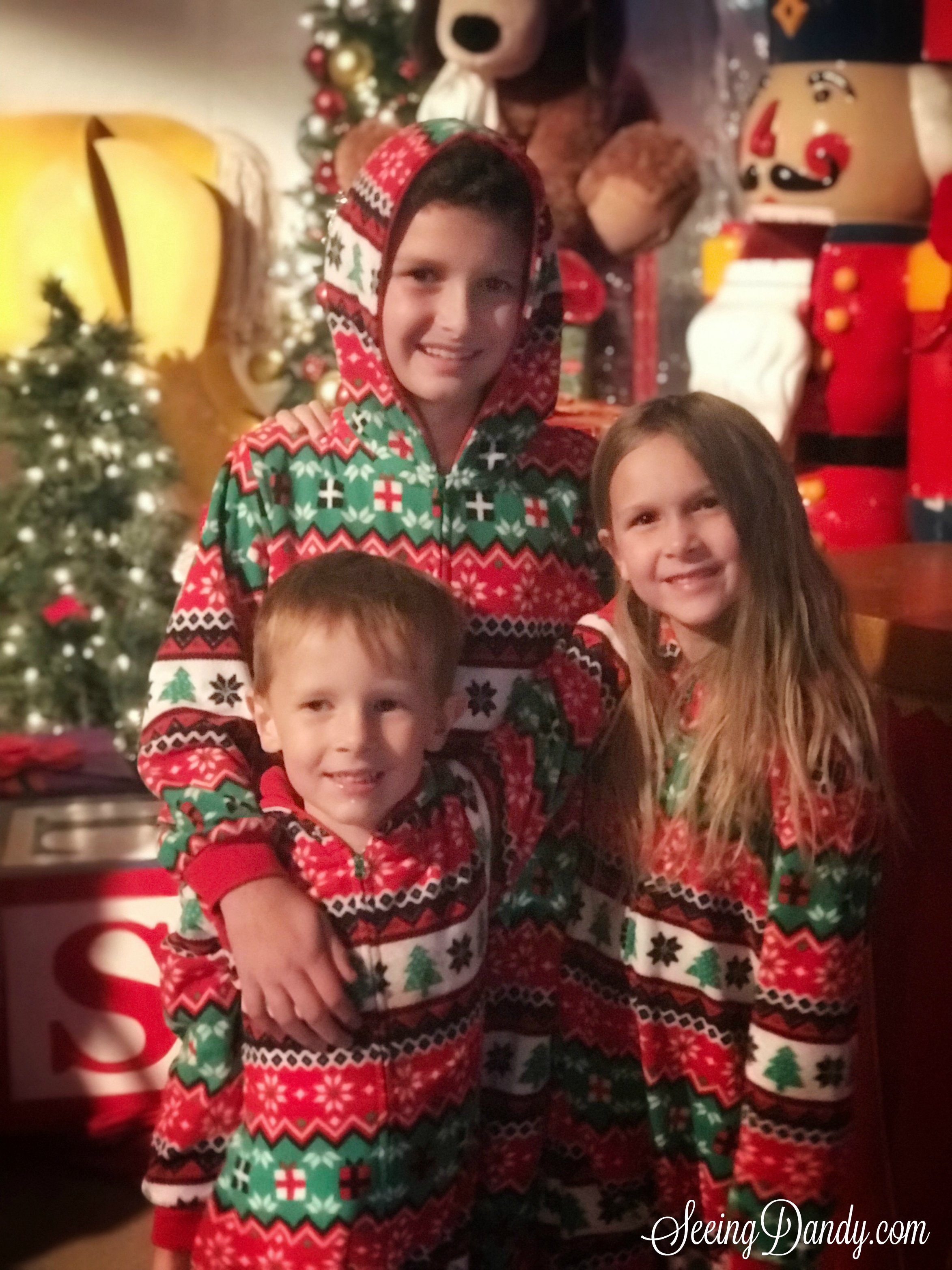 Kids love Polar Express tickets with Nutcracker themed Christmas decorations.
