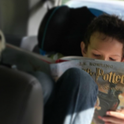 Harry Potter illustrated book deal