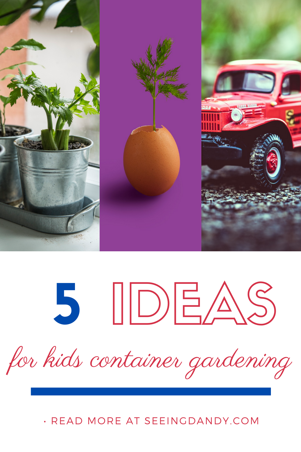 Container gardening ideas for kids