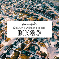 scavenger hunt bingo neighborhood family fun