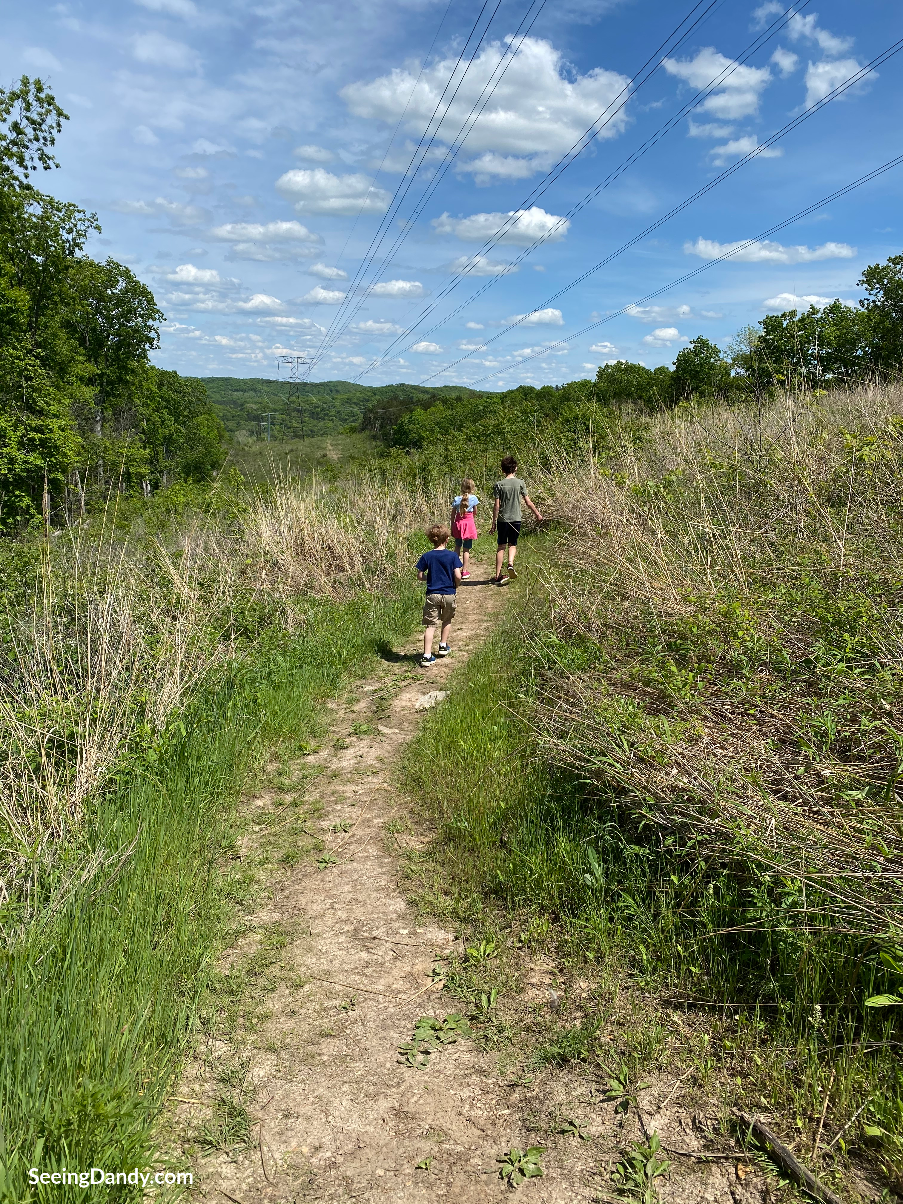 family hike near st. louis, family activities, family fun, midwest travel, explore outdoors
