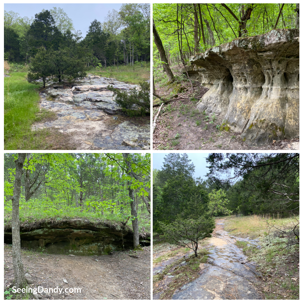 Don Robinson State Park, Cedar Hill Missouri, Labarque Hills Trail, family hike, st. louis family, hiking adventures