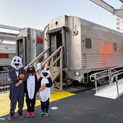 union station halloween train, saint louis halloween experience, family fun, train shed, train yard, jack skellington costume, panda costume, black cat costume