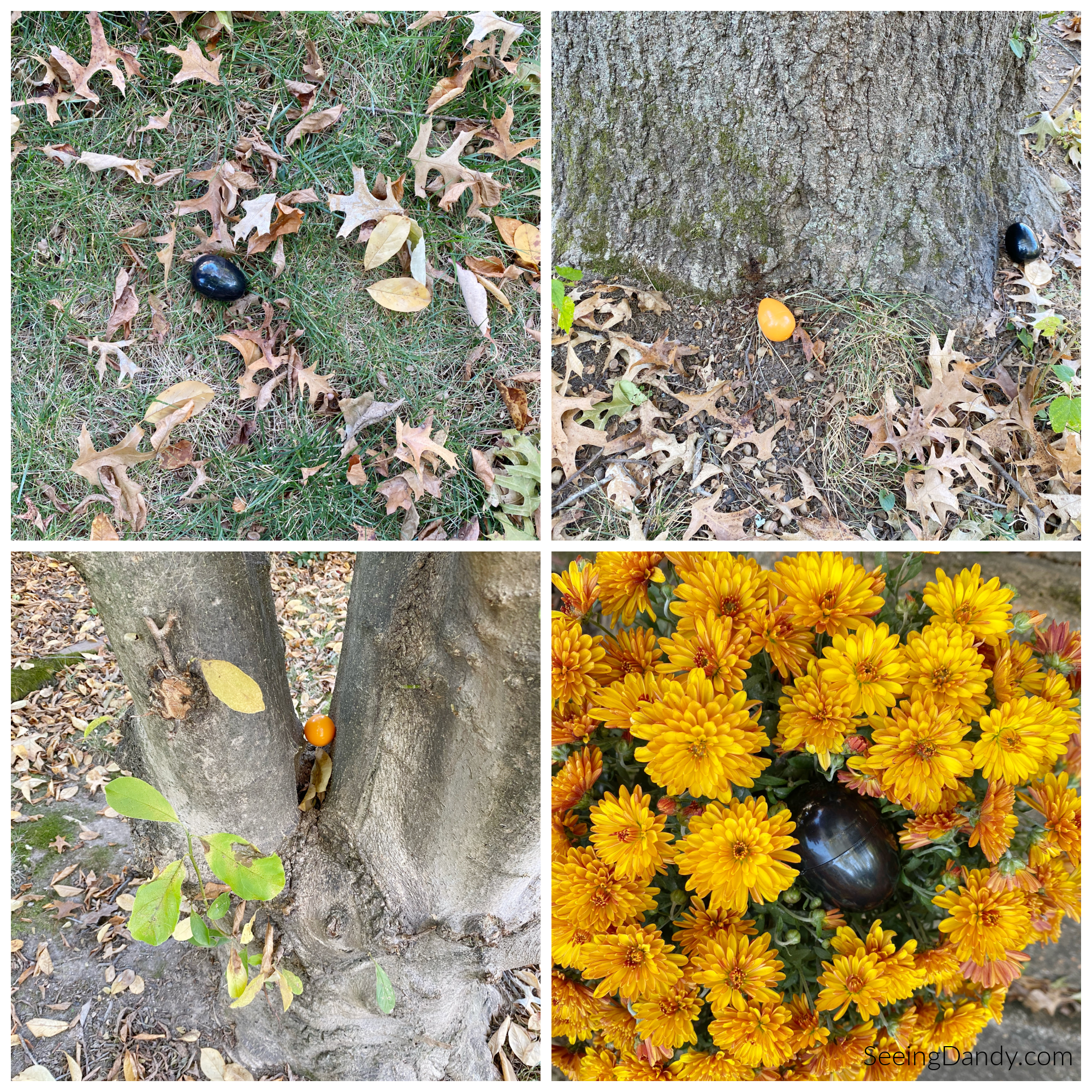 hidden halloween eggs, halloween scavenger hunt, halloween egg hunt, yellow mums, fall leaves