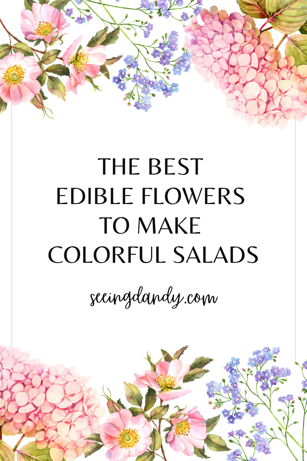 how to make colorful salads using edible flowers